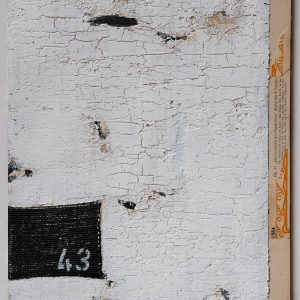 DSCF1866 Kopie
